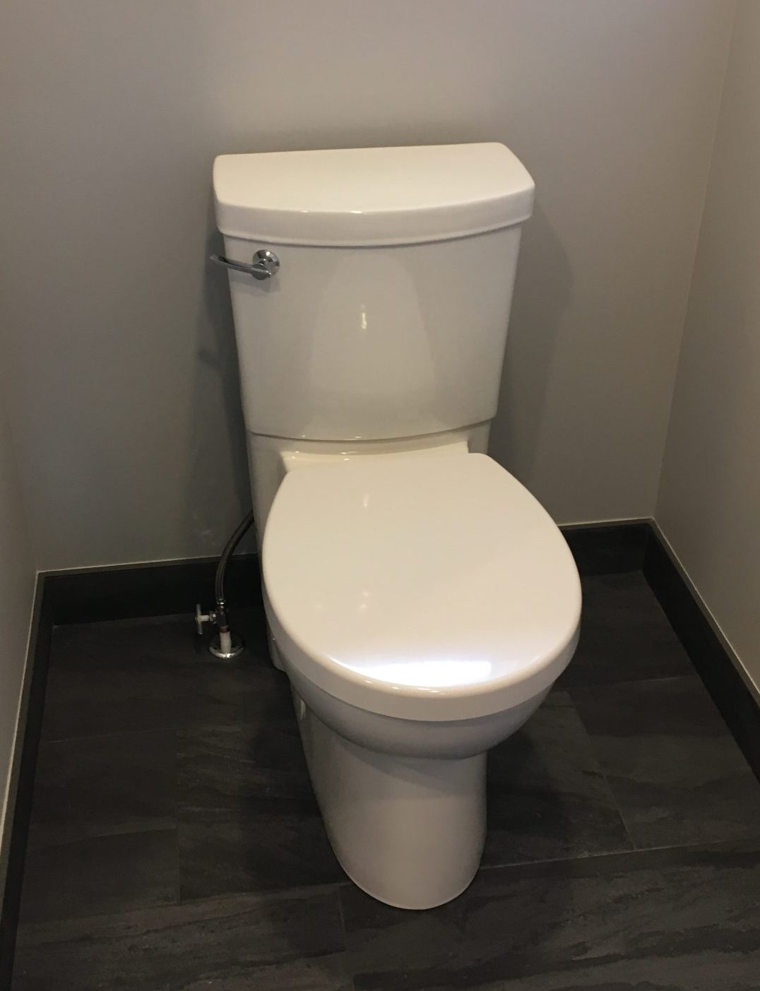 Concealed trapway water closet